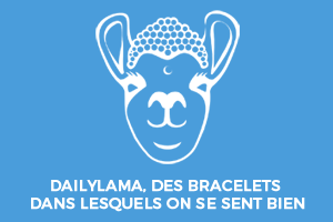 dailylama.shop