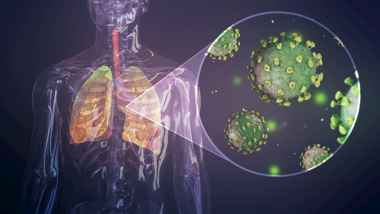 booster naturellement son système immunitaire